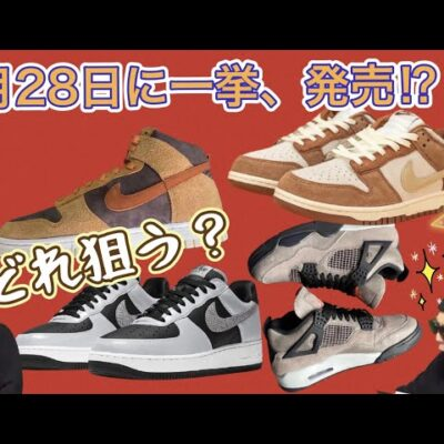 "2021年1月28日、一気に4足発売!Air Jordan 4 Taupe Haze!Nike Air Force 1 B ""Reflective Snakeskin""!DB0732-200"