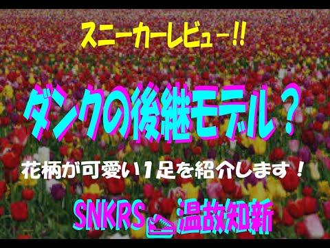 【スニーカーレビュー】ダンクの後継モデルの紹介!匿名質問箱にもANSWER!!【SNKRS 温故知新Vol.16】